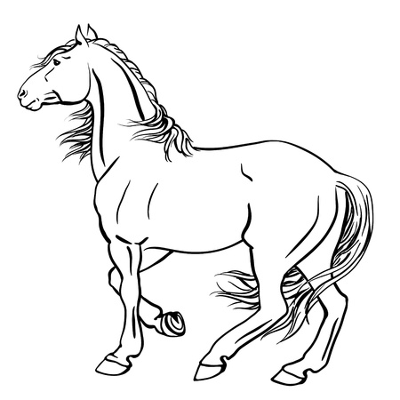 Punch horse Vector