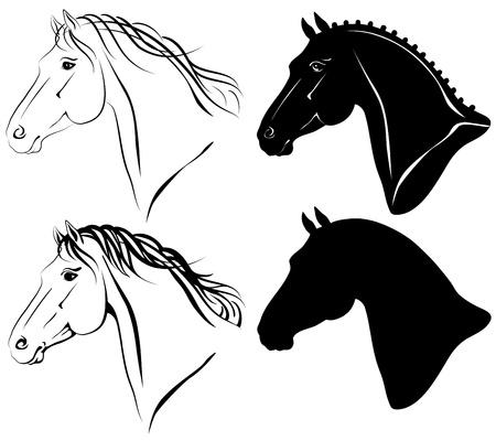 dressage: Vector illustration of horse head clip-art set. Illustration