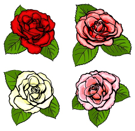 Four different colours roses with green leaves Vectores