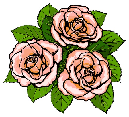 Three pink roses with leaves in a bouquet Illustration