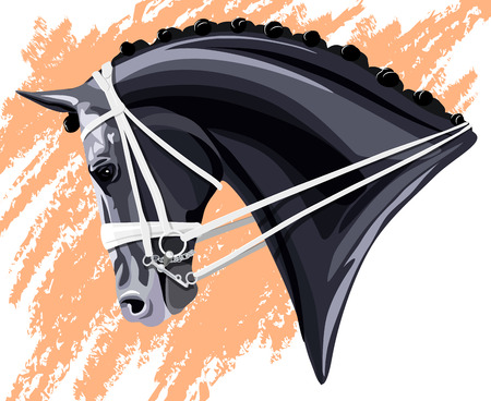 Black Dressage Horse head on pink background