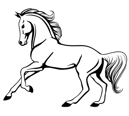 Outline illustration of beautiful galloping arabian horse
