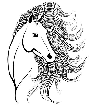 たてがみを持つエレガントな馬の頭のベクター スケッチ