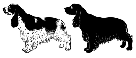 Cocker Spaniel set - outline and silhouette vector Stock Photo