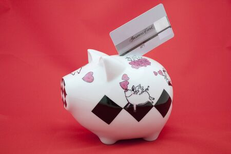 cardholder: Piggy bank with credit card on red Stock Photo