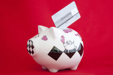 Piggy bank with credit card Stock Photo - 10850132