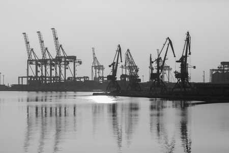 Sea port with cranes and docks early in the morning Фото со стока