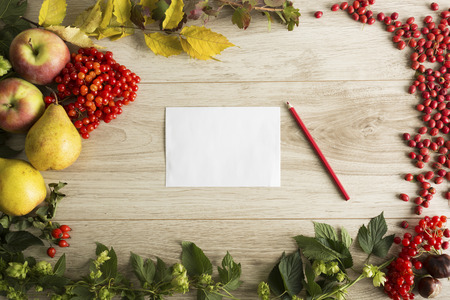 autumn food: Fruits, berries and a letter on the autumn background