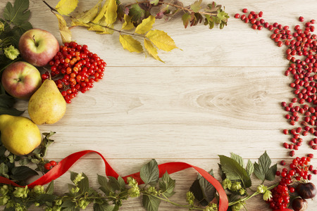 thanksgiving card: Fruits and berries on the autumn background
