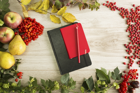 autumn food: Fruits, berries and the notebook on the autumn background