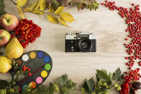 Fruits and berries on the autumn background