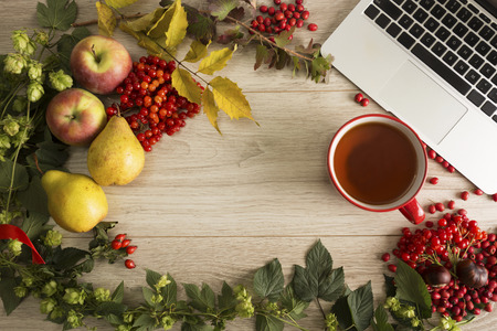 wood working: Fruits, berries and laptop on the autumn background Stock Photo