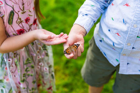 Two friends playing with a butterfly in the garden