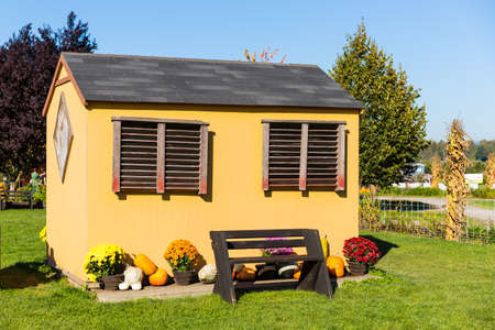 Fall harvest background on a family farm