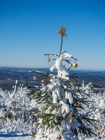 albero di Natale decorato nei Monti Metalliferi Archivio Fotografico