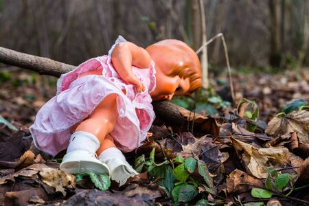 Doll in the forest