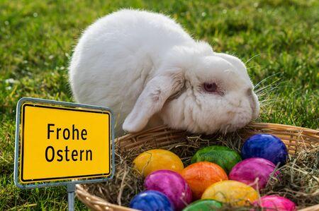 Frohe Ostern Osterhase Ortsschild