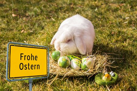 "Germany ""Frohe Ostern"" Easter Bunny"