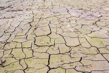 Dry Ground cracks Climate Change Фото со стока