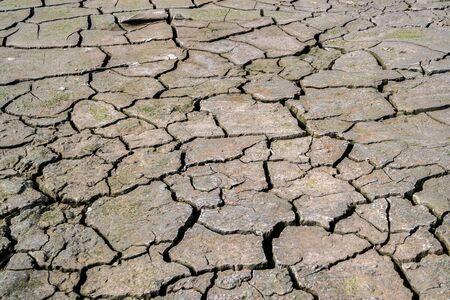 Dry Ground cracks texture