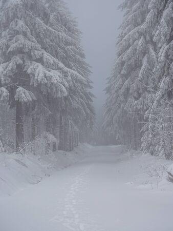 Nice Winter Landscape Erzgebirge Фото со стока