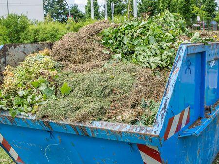 Grass Container in the garden Stock fotó