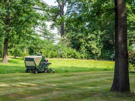 Le tracteur à gazon tond la pelouse dans le parc Banque d'images