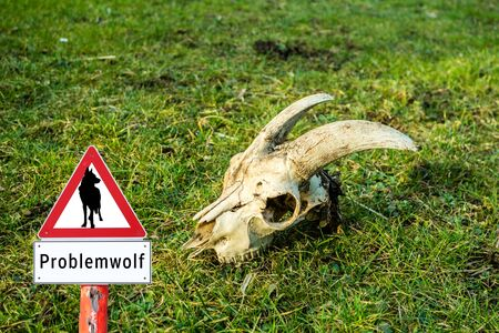 Problem Wolf Warnsign in Germany