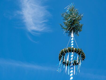 Maypole in spring on blue background