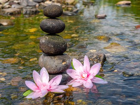 Balance of stones with lotus flowers in the river