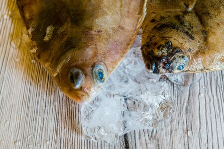 Fresh plaice Fish from the market Banque d'images