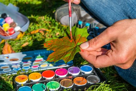 Maple leaf paint tinkering kindergarten Background Autumn