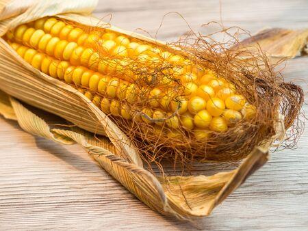 Corn cob decoration Reklamní fotografie
