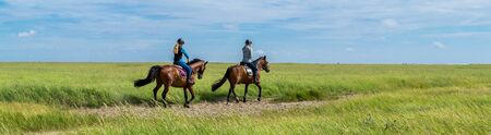 Horse riding in the salt marshes of the North Sea