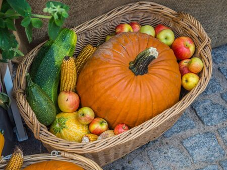 colorful autumnal pumpkin basket background on the street Banco de Imagens