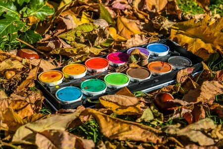 Water paint box in autumn