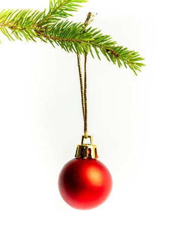 Christmas bauble isolated on fir branch