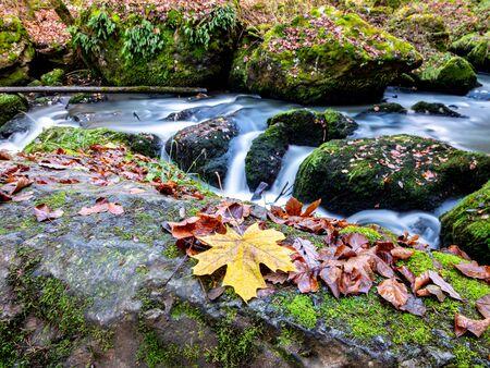 River Trieb in the autumn Vogtland Saxony Germany Фото со стока