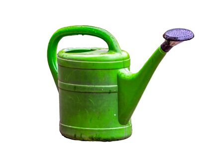Green watering can isolated on white background Фото со стока
