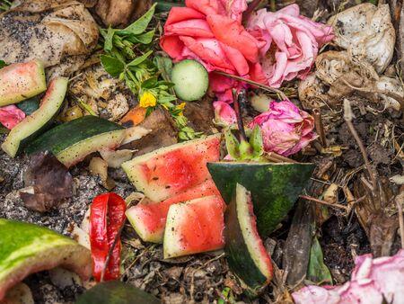 Organic waste in the garden