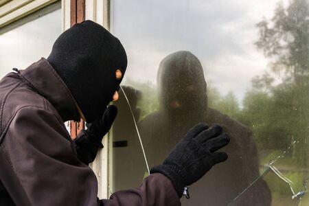 Burglar looks into garden arbor