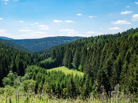 View over the Thuringian Forest in Germany