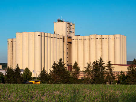 Feed silo in agriculture industry