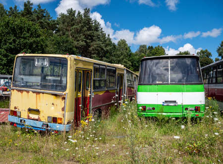 Old bus cemetery with parked buses