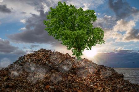 Garbage dump with scrap environmental destruction of nature Standard-Bild