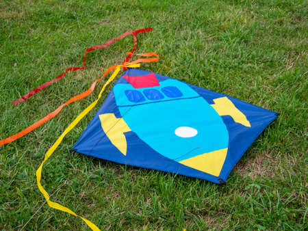 Kite lies on a meadow Standard-Bild