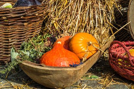 colorful autumnal pumpkin basket background