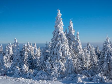 Winter Impression Fichtelberg east germany