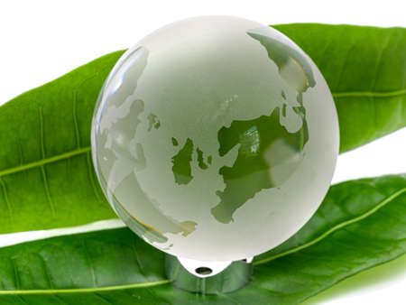Glass world globe on white background with green leaves