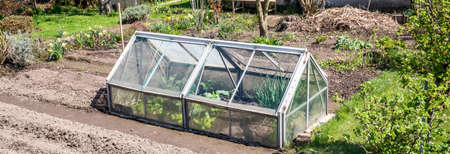 Panorama cold frame in the garden